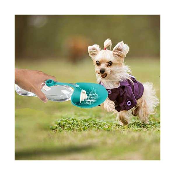 TIOVERY Dog Water Bottle for Walking, Pet Water Dispenser Feeder Container Portable with Drinking Cup Bowl Outdoor Hiking, Travel for Puppy, Cats, Hamsters, Rabbits and Other Small Animals 20 OZ 6