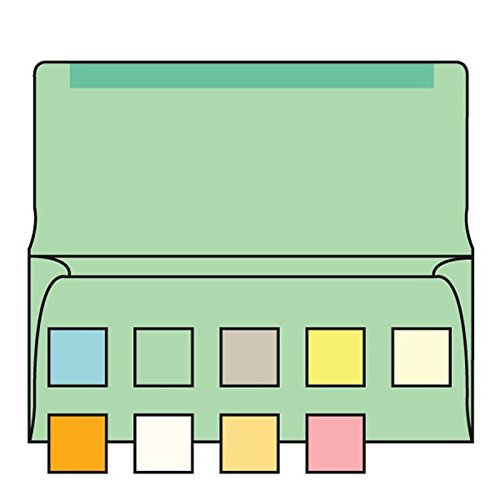 #6-3/4 Collection/Remittance Envelopes 3-5/8'' x 6-1/2'' 24# Recycled Green Pastel, Open Side, Flaps Extended (Box of 500)