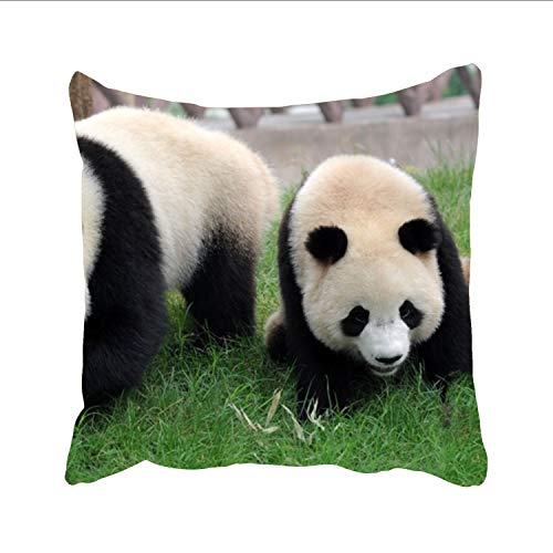 FunnyLife Giant Panda Bear Pillow Cases Both Sides Ornament and Gift to Dance Room Club Kids Boys Pub Study (Dreamsack White Pillowcase)