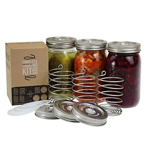 Trellis + Co. Stainless Steel Fermentation Jar Kit | 3 Waterless Fermenter Airlock Lids & 3 Pickle Helix Fermentation Weights, for Wide Mouth Mason Jars | Recipe eBook Included with - Co Kit