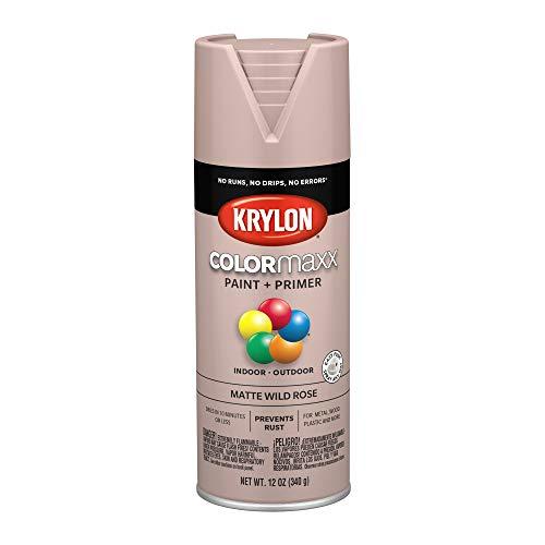 Krylon K05601007 COLORmaxx Spray Paint