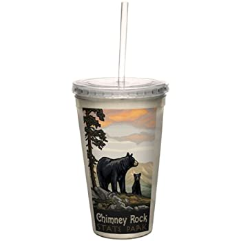 Tree-Free Greetings cc33250 Vintage New York Wine Country by Paul A Lanquist Artful Traveler Double-Walled Cool Cup with Reusable Straw 16-Ounce