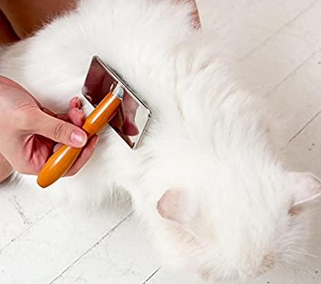 : Amazon.com: Babion Self Cleaning Slicker Brush Gentle for Dog and Cat