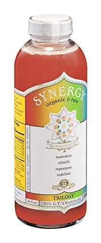 GTs Enlightened Synergy Organic and Raw Kombucha Trilogy, 16 Ounce -- 12 per case. by GTs Kombucha