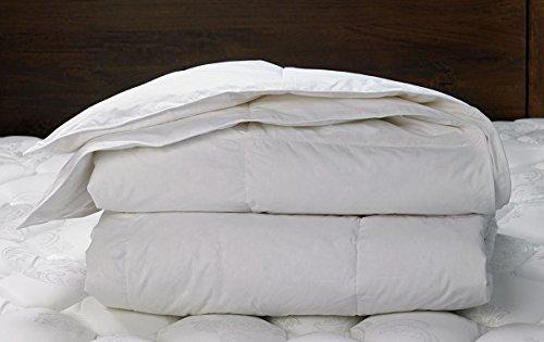 w-hotels-queen-down-duvet-comforter