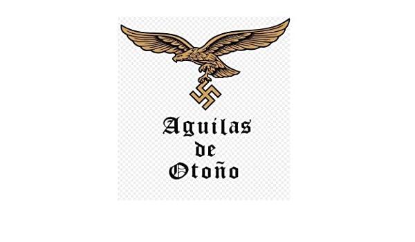 Aguilas de Otoño (Primera parte nº 1) eBook: lecaros horta, pablo ...
