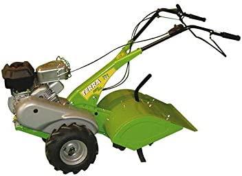 Green Cat Motocultor Terra HP 5,5/4 Tiempos: Amazon.es: Hogar