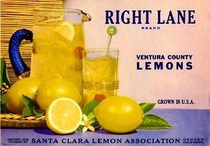 MAGNET Oxnard Santa Clara Right Lane Lemon Citrus Fruit Crate Magnet Art Print
