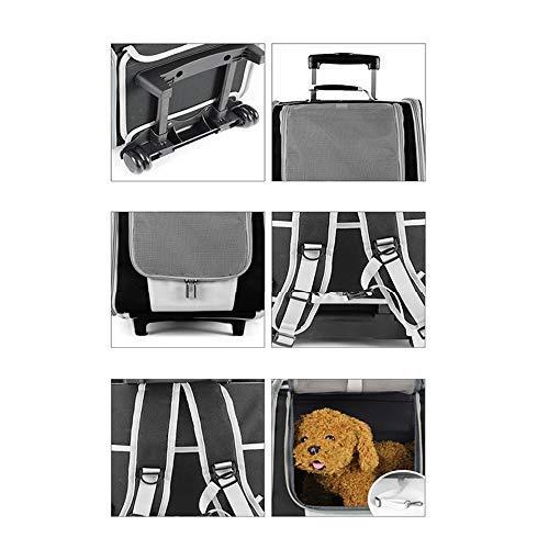 Midsy Gatti Cani Pet Zaino Pet Carrier Crate Multifunzione Trolley per Animali Domestici Traspirabile Borsa a Tracolla Zaino Pet out Trolley per Cani Trasportino Zaino Borsa