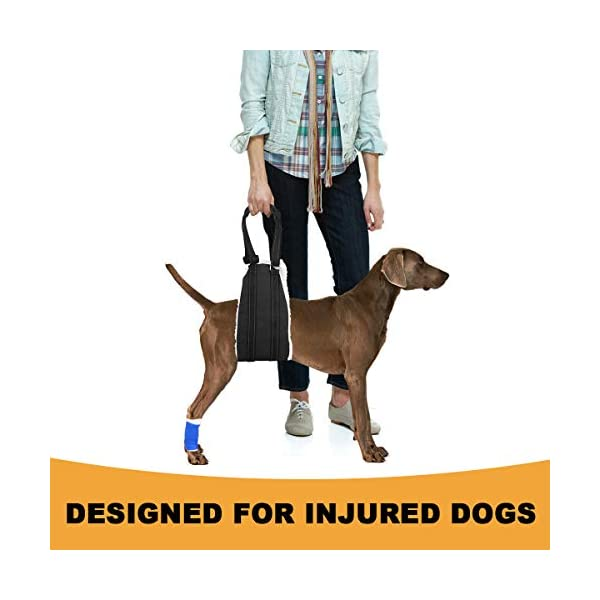 Bolux Portable Dog Sling Rear Legs – Dog Lift Harness for Back Legs, Adjustable Hip Support Harness for Canine Aid… Click on image for further info. 6