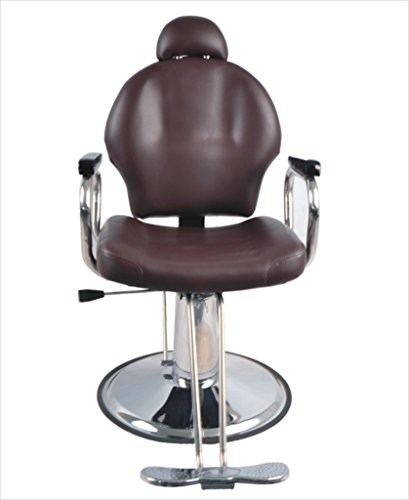 BarberPub Reclining Hydraulic Barber Chair Salon Styling Beauty Spa Shampoo 9838 (Brown) by BarberPub