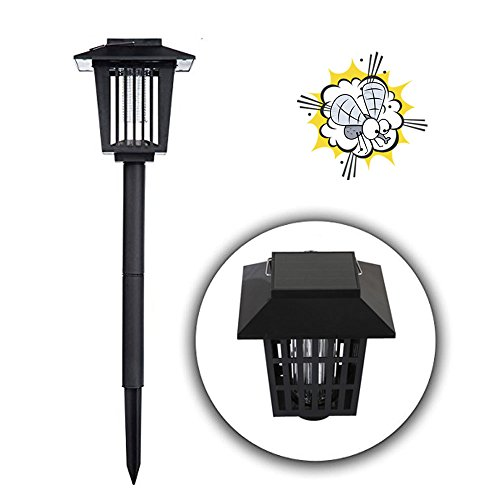 Outdoor Insect Killer Lamp in Florida - 4