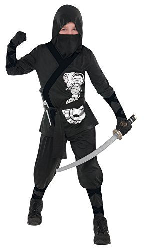 Cheap Samurai Costumes (Children's Silver Cobra Ninja Costume Size Large (12-14))