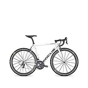 Focus Izalco Max Ultegra | Bicicleta Carbono Carretera