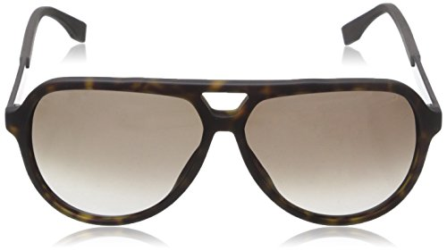 Boss S 0731 Brown Marrón Sonnenbrille Sf Carbbw Havana Dark 1r1qg