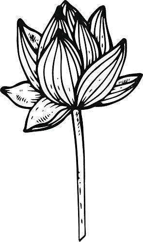 Amazoncom Pretty Hand Drawn Dainty Lotus Flower Cartoon Art Vinyl