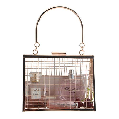 LETODE unique bags for girl gold cage clutch& crossbody bags ladies casual metal hollow shoulder handbags for women ()