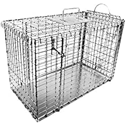 Tomahawk Live Trap Small Dog Transfer Cage with Top and Sliding Door