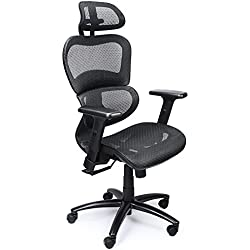 Mysuntown Ergonomic Mesh Office Chair with Back Support, Adjustable Headrest & Adjustable Armrest Lumber Support Desk Executive & Task Chair for Home Office Conference Room - fits for Men and Women