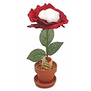 2nd Year Wedding Anniversary Gift, Potted Silk Desk Rose with Cotton, Perfect Present for Wife or Husband 92