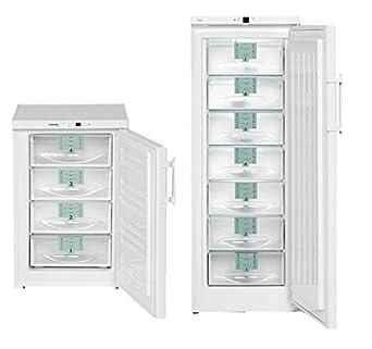 Liebherr 670465 congelador armario, 20 °C, 513 L, GEX 5216: Amazon ...