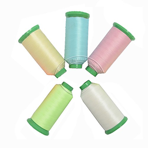 Neomark 5 Spools Different Colors Glow In the Dark Embroidery Thread 1000 Yard / 915m No Fading (5 -