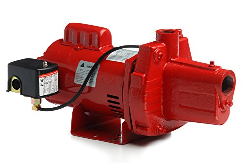 Red Lion RJS-50-PREM 602206 Premium Cast Iron Shallow Well Jet - Gpm Pump Manual Submersible Sump