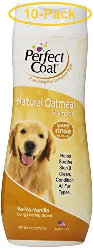 Oatmeal Shampoo 16 oz - Pack of 10 ()