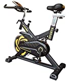 Fitness House Bestia Sports Pro Bicicleta de Ciclo Indoor, Adultos Unisex, Negro/Oro, M-l