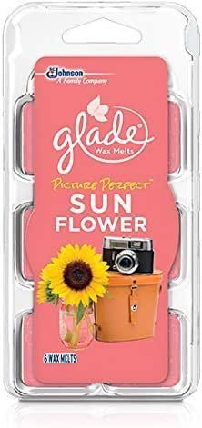 Glade Wax Melts Picture Perfect Sun Flower, 6 Count (2 Pack)