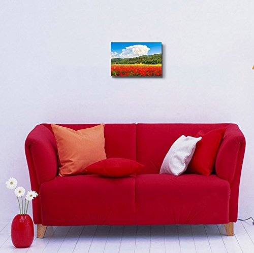 Beautiful landscape with field of red poppy flowers and traditional farm house in Monteriggioni Tuscany Italy Wall Decor