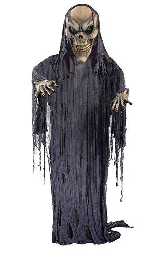 Morris Costumes Men's HANGING SKELETON PROP, 12 (12 Foot Hanging Halloween Props)