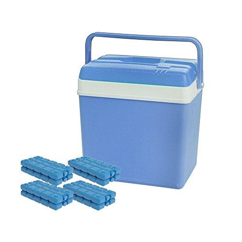 Große ToCi Kühlbox, 24 Liter mit 4 ToCi Kühlakkus ( je 200 g)
