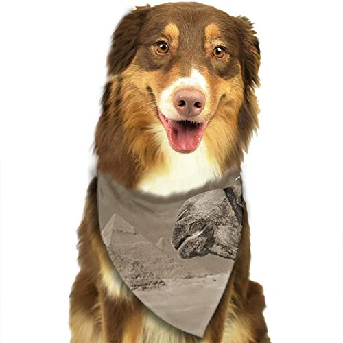 Address Verb Dog Bandana Pet Scarf Egypt Pyramid Camel Cute Triangle Bibs Baby Puppy Cat Kitten