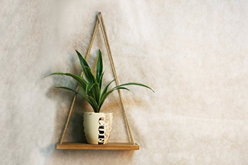 Modern Wall Hanging Shelf Wood Plant Holder Indoor 14×6 Inch Dark Mid Century Decorative Wooden Mounted Swing Shelves Centerpiece Pot Coaster for Home Decor Living Room Bathroom Bedroom 41hbMnxoZmL