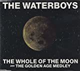 The Whole Of The Moon / The Golden Age Medley by The Waterboys