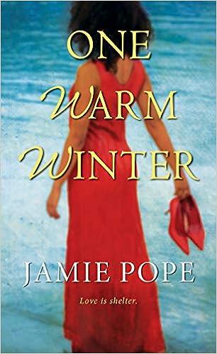 a240655a1 Amazon.com  One Warm Winter (Sunny and Warm) (9781496718273)  Jamie ...