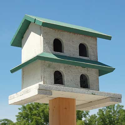 BestNest Bird In Hand Hanover Purple Martin House, 4 Rooms by BestNest