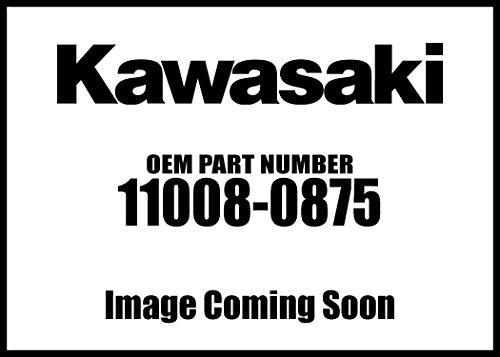 Kawasaki 2016-2018 Mule Pro-Dx Mule Pro-Dxt Eps Le Cylinder Comp Head 11008-0875 New Oem