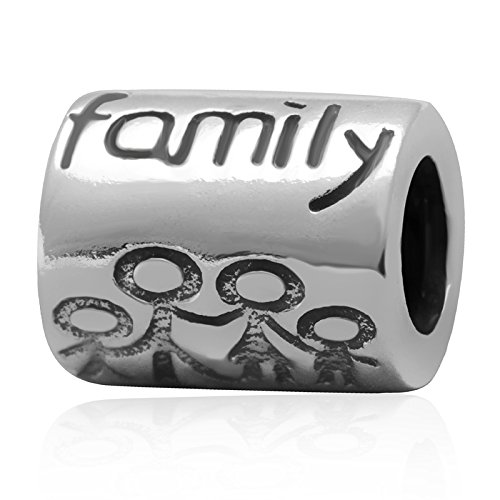 Letter Family Charm 925 Sterling Silver Family Together Charm Fits for DIY Bracelets jewelry - 3 Sons Pandora Charms