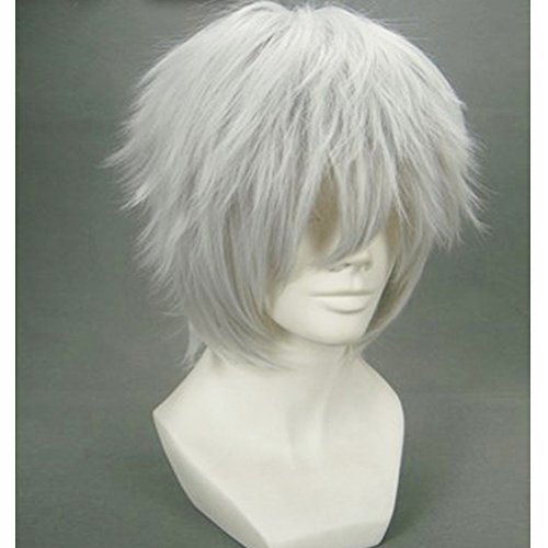 BERON Short Straight Layered Anime Cosplay Costume Party Halloween Wigs Come with Wig Cap (Silvery Grey) -