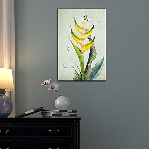 Retro Style Tropical Plant Heliconia
