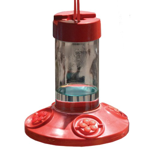Songbird Essentials SE6002 Feeder 16 Ounce