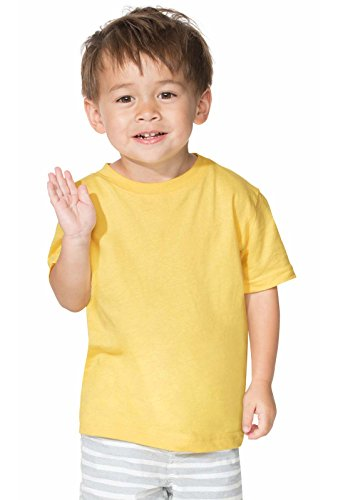 Rabbit Skins Toddler 100% Cotton Jersey Short Sleeve Tee (Black, 3 Toddler)