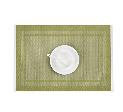 Table Mats with Stainless Steel Edge Cover Both Sides (Set of 6), EgoEra Place Mats Sets Table Place Dinner Mats Washable Plastic Vinyl Table Mats for Dining / Kitchen Table, 4530cm, Green by EGOERA