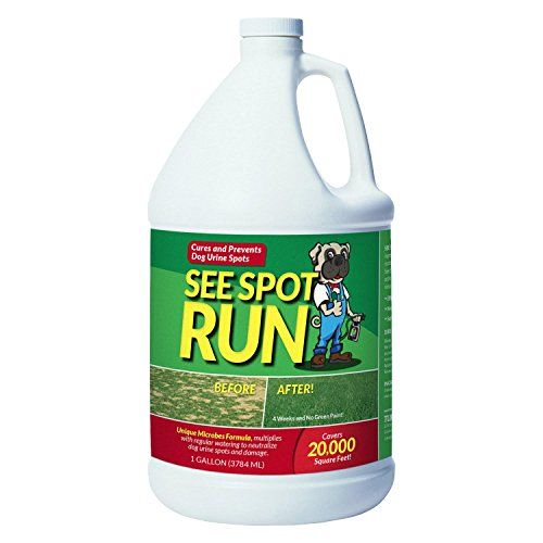 Pawblem Solvers See Spot Run Lawn Protectant - Complete and Safe Natural Lawn Care for Pets. Cures and Prevents Dog Urine Spots (128 oz. / 1 Gallon Economy Refill)
