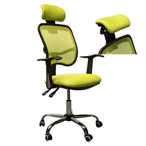 Adjustable Mesh Task Computer Desk Office Chair High Back with Headrest Swivel green #507 (Heater Edmonton Patio Parts)