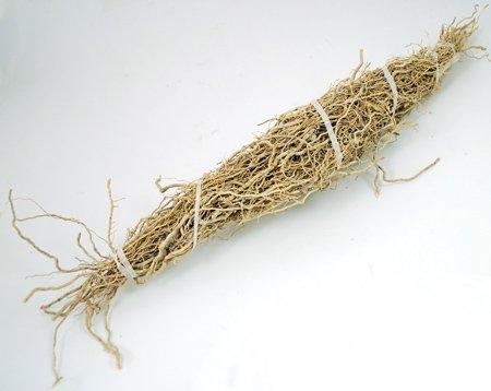 Patchouli Root (Patchouli Herb)
