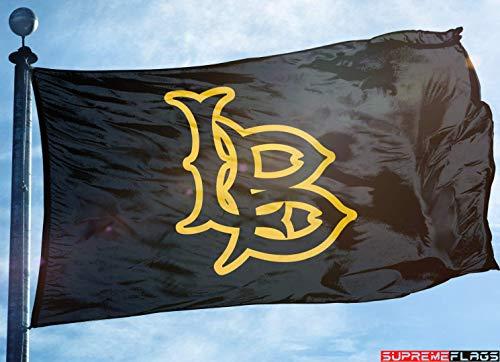 CSULB Flag Banner 3x5 ft California State University Long Beach 49ers Black ()