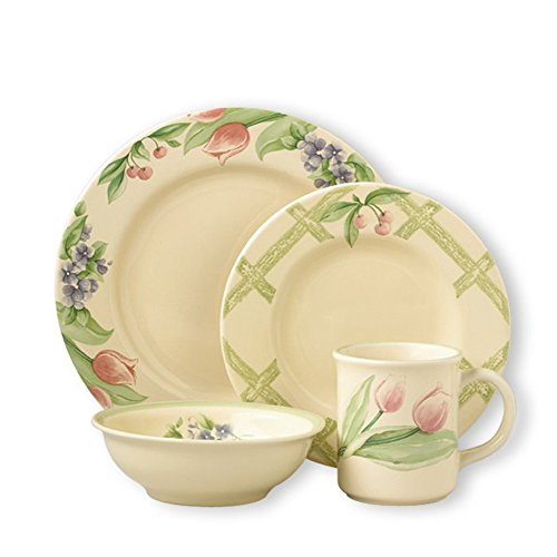 Pfaltzgraff Garden Party Dinnerware Set (16 Piece)